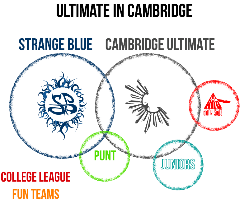 Diagram: Strange Blue Club Structure